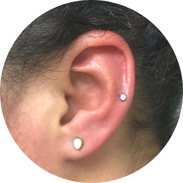 Shiny little lower helix piercing