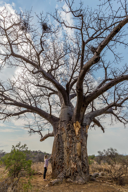 Staying at Pel's Post, Kruger National Park