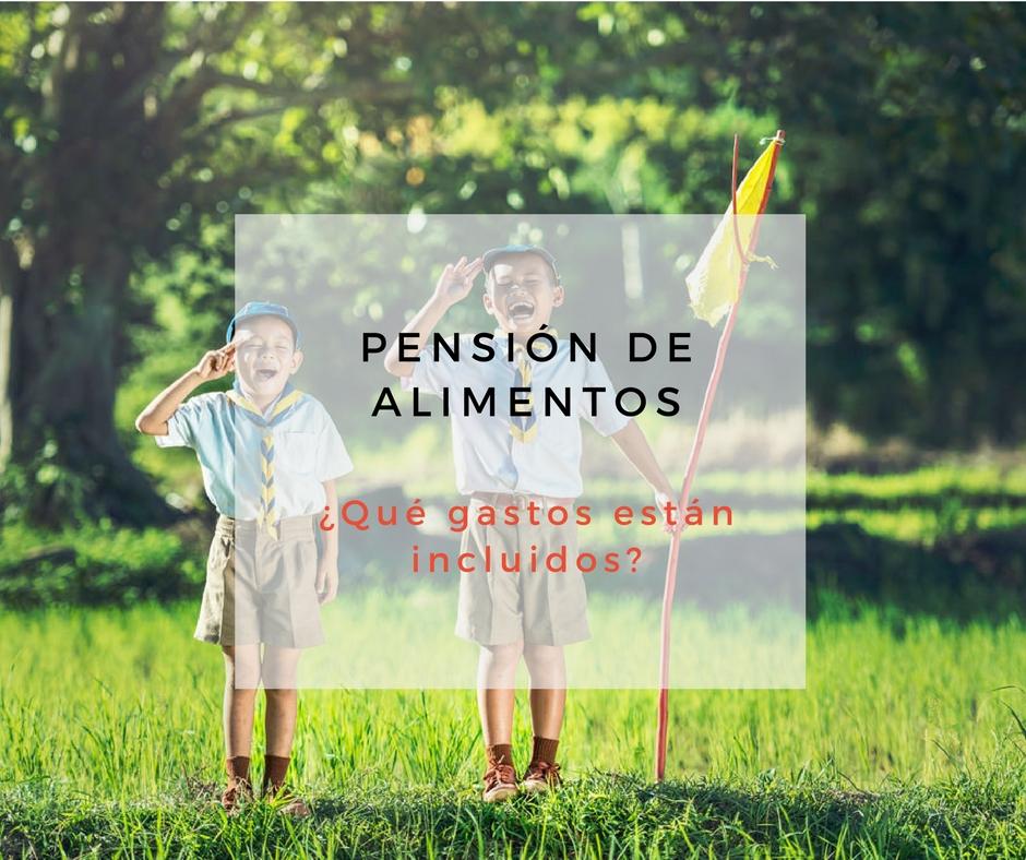 pension alimentos gastos incluidos