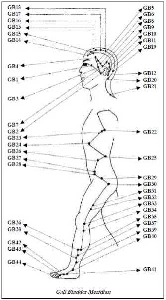 Meridian Image Credit: Atlas of Acupuncture Points by Dr. Krishna N Sharma