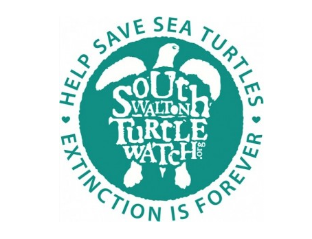 Volunteers from SWTW Monitor the Beach for Nests and Assist with Preservation & Awareness