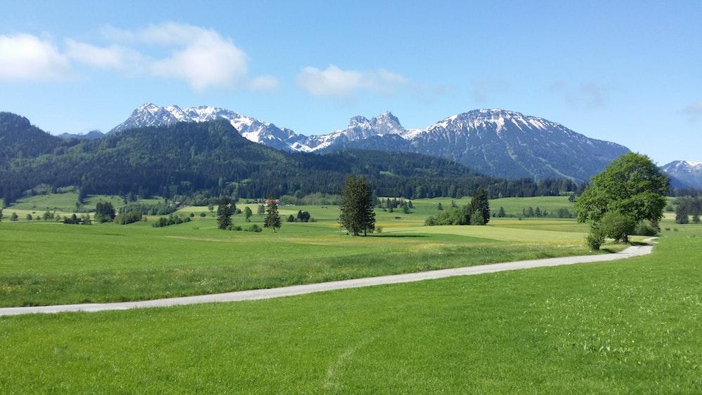 grass-hills-landscape-104351.jpg