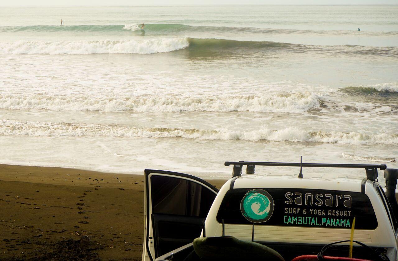 surf check.jpg