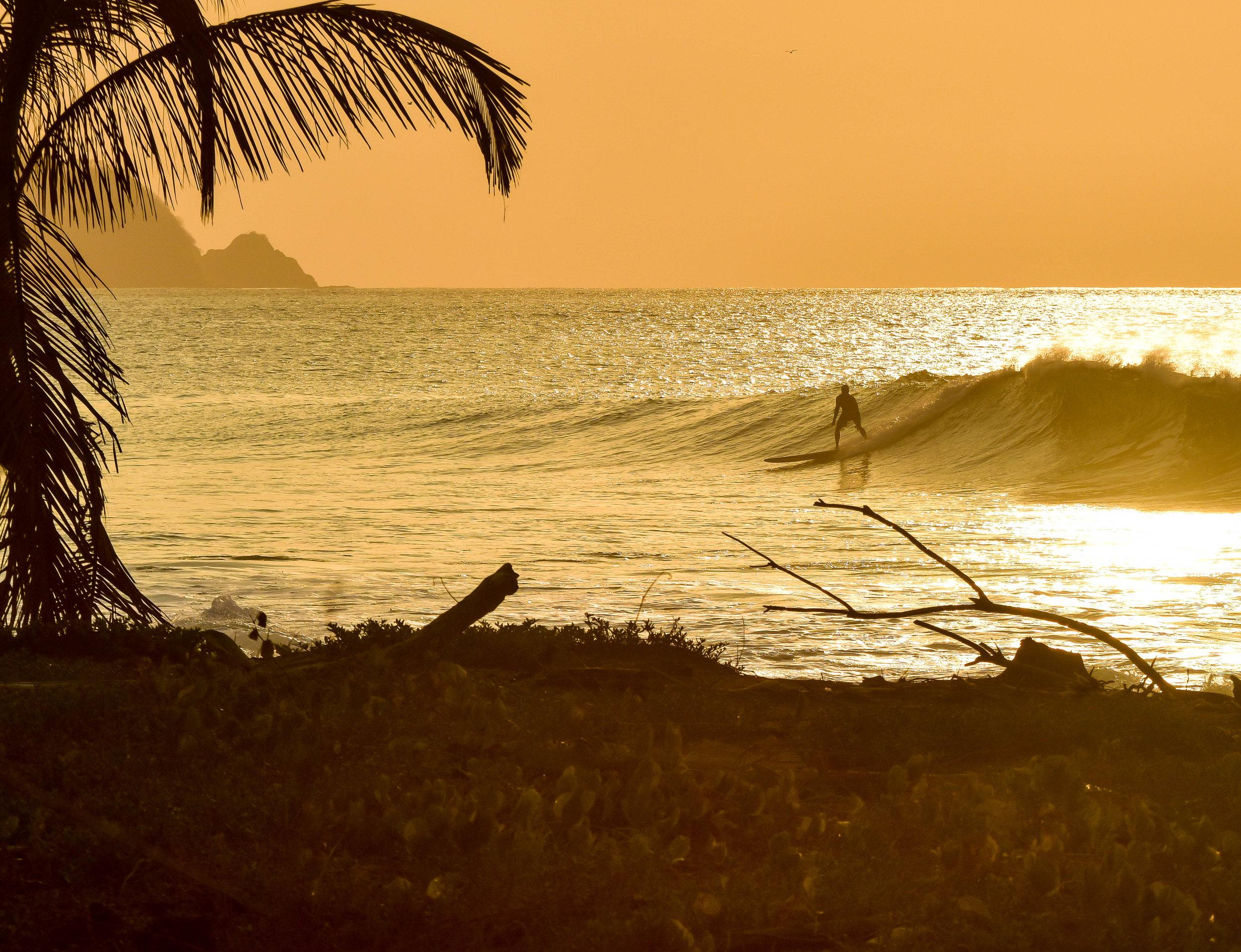 Surf Trippin Panama Love 3.14.16-8.jpg