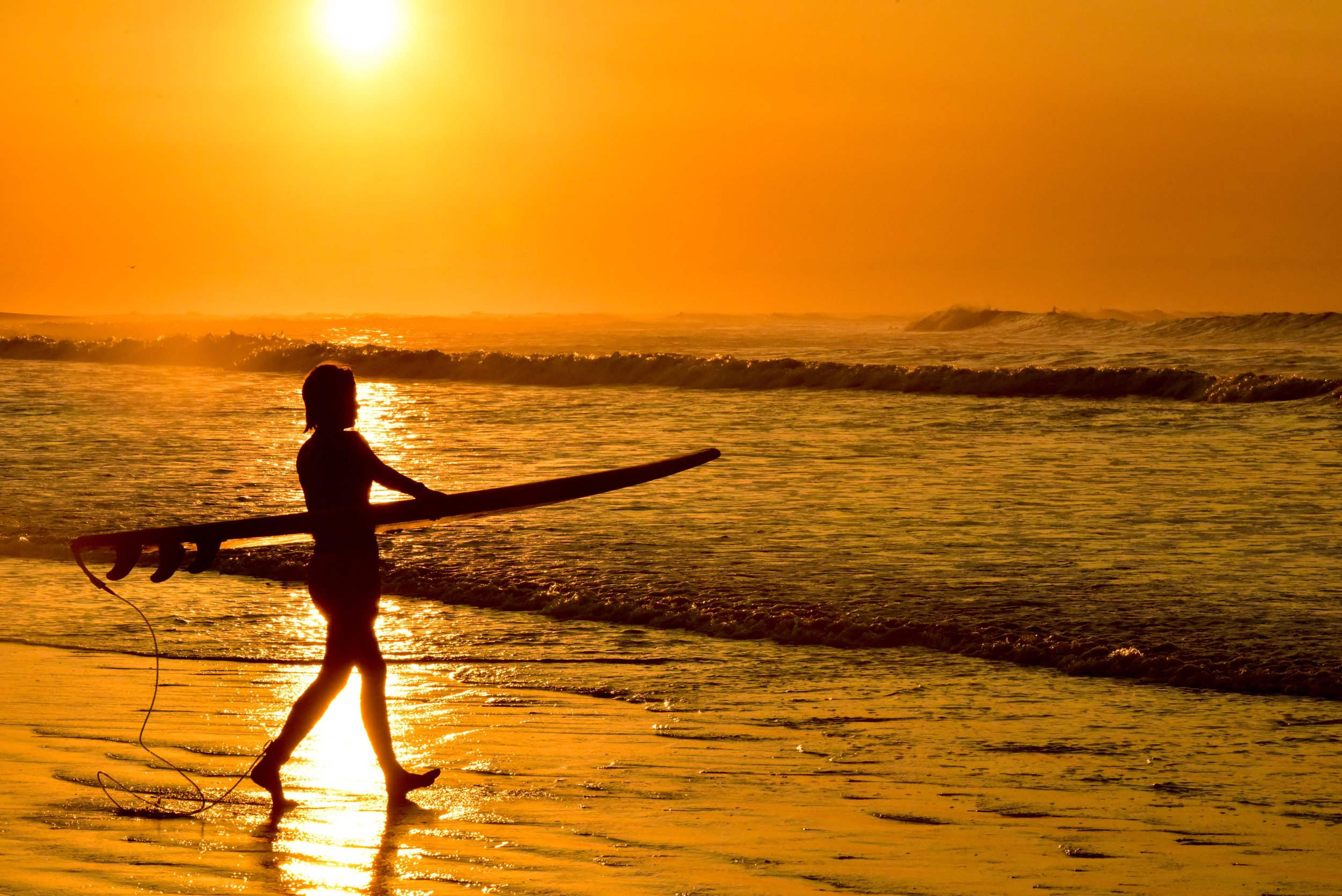 sunsets, surfboards, and S A N S A R A await ..
