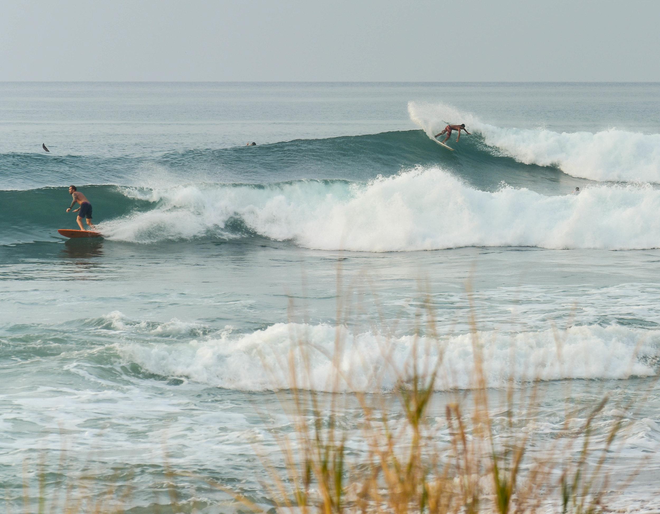 Surf Trippin Panama Love 3.13.16-9.jpg