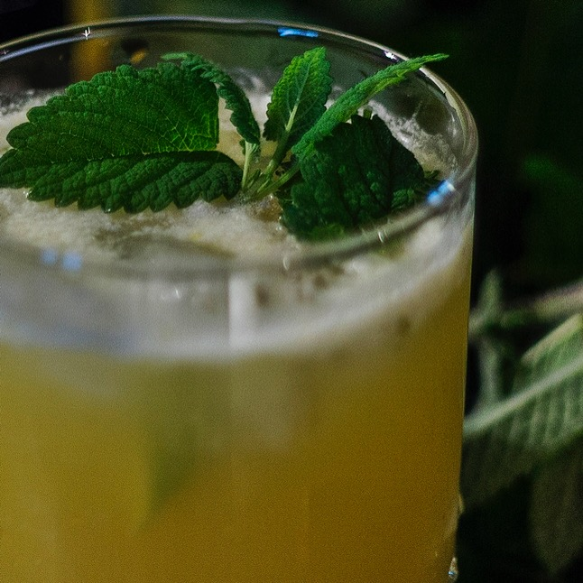 Turmeric Lime G&T with Lime Wedges & Mint Garnish