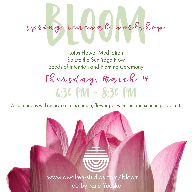 bloom-01.png