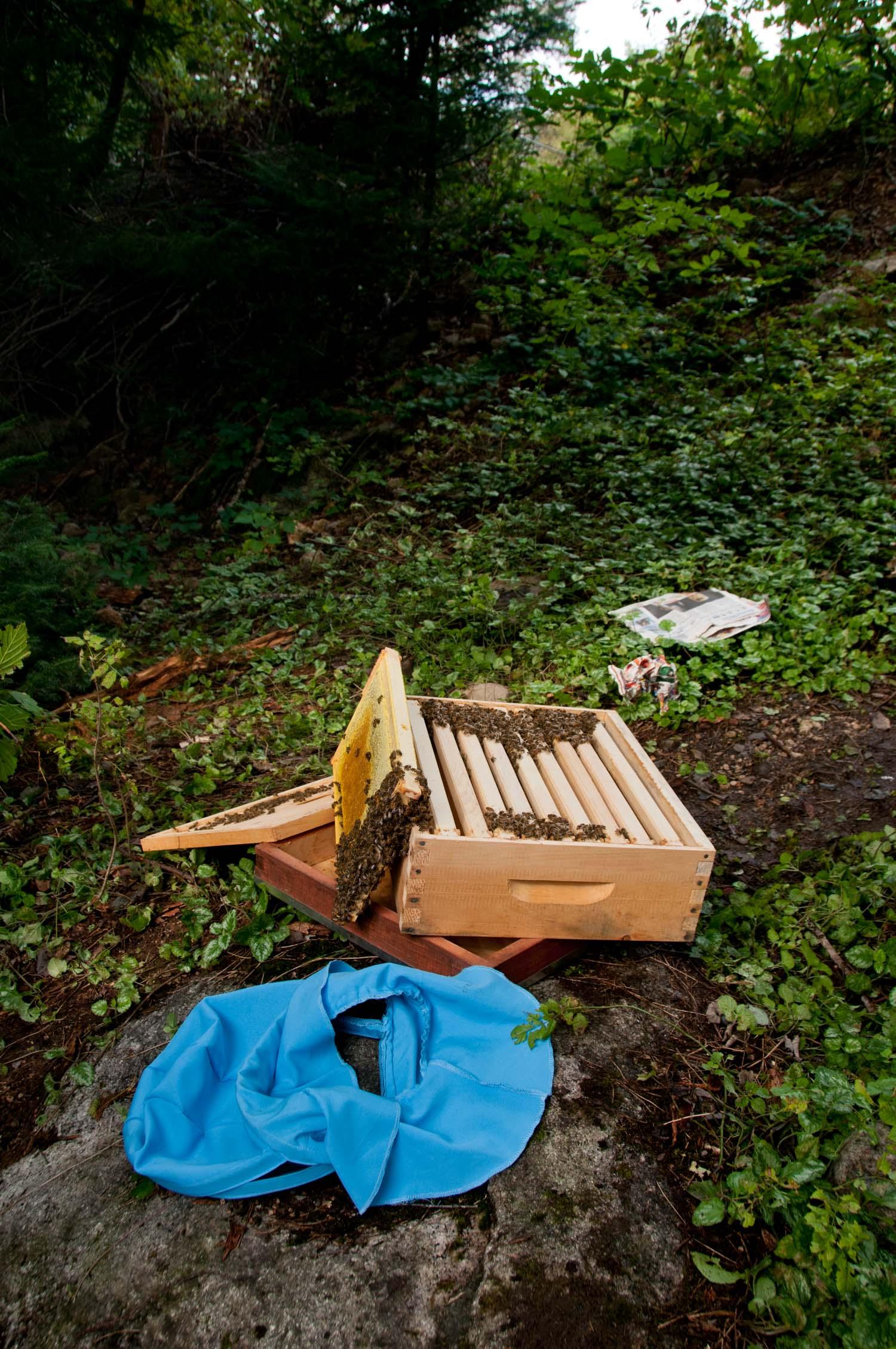 Beehive Beekeeper parts