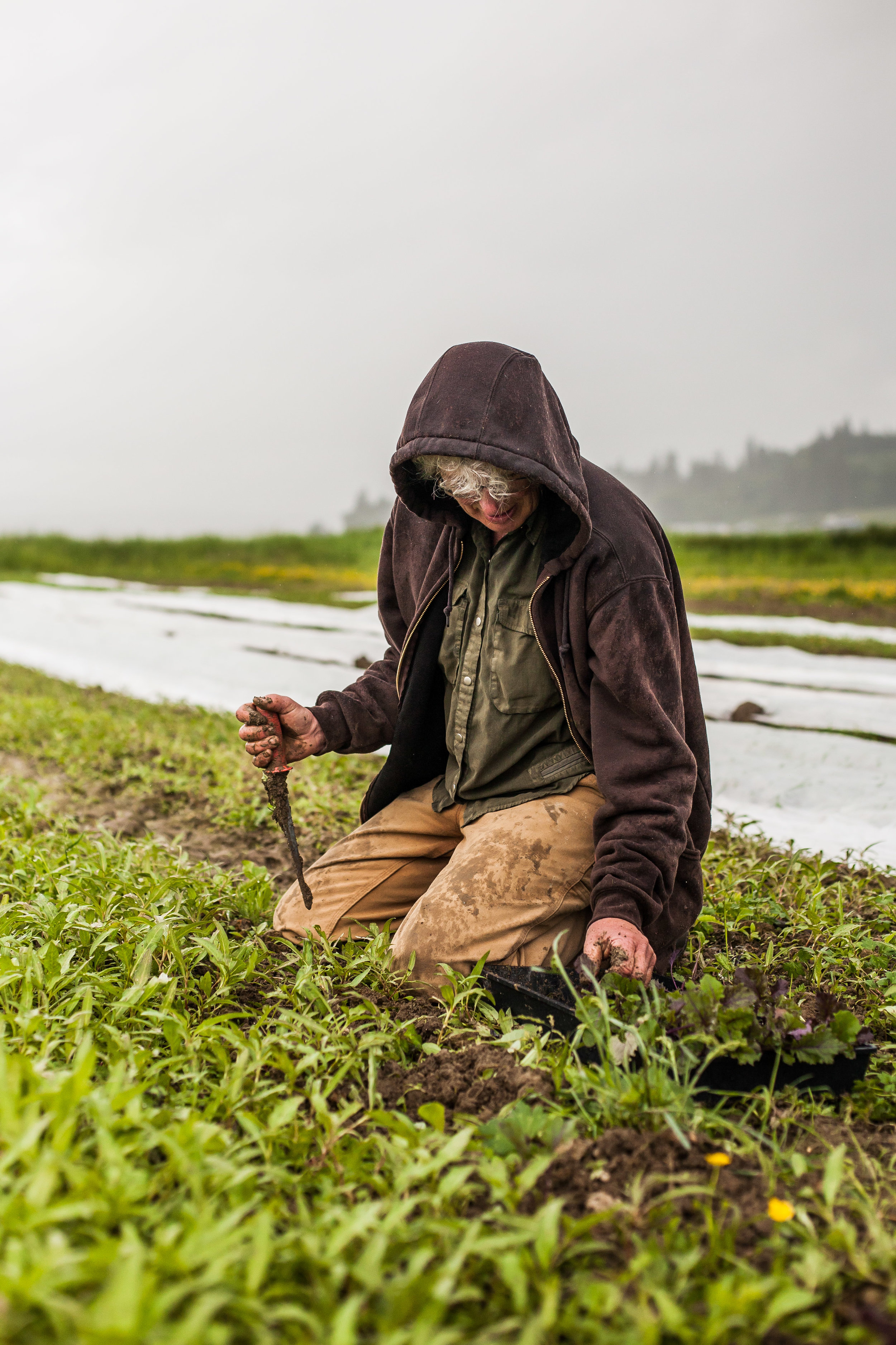 Female Farmer Project _ AudraMulkern12.jpg
