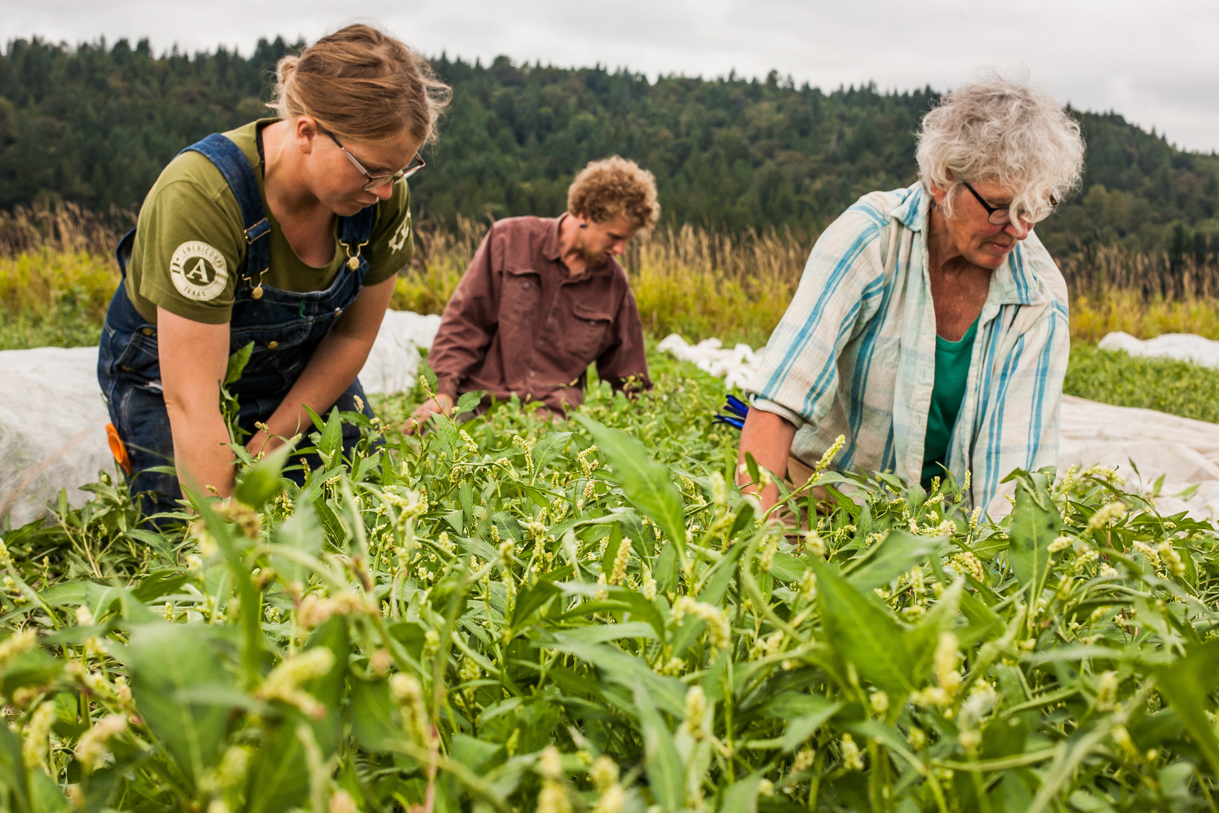 Female Farmer Project _ AudraMulkern3-3.jpg