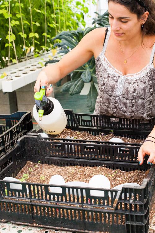 Female Farmer Project_ Audra Mulkern2.jpg