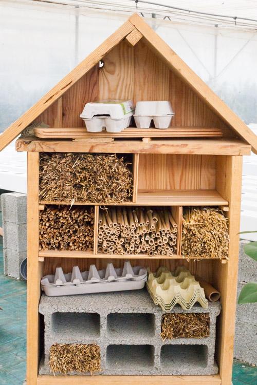 Pollinator house in progress