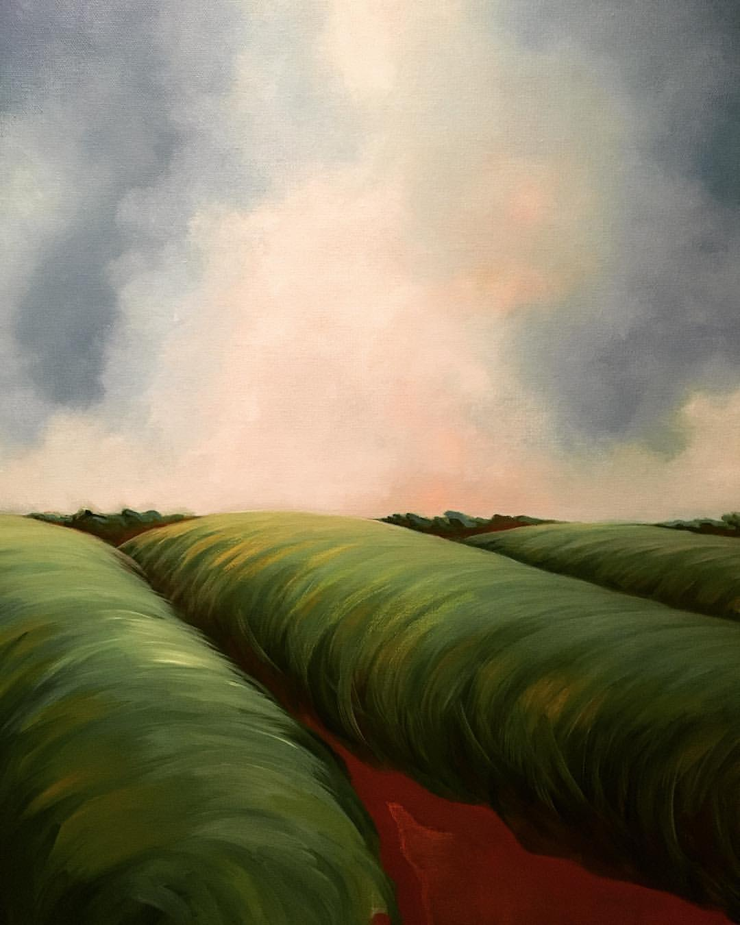 Sugar Cane Fields - courtesy of Angie Provost