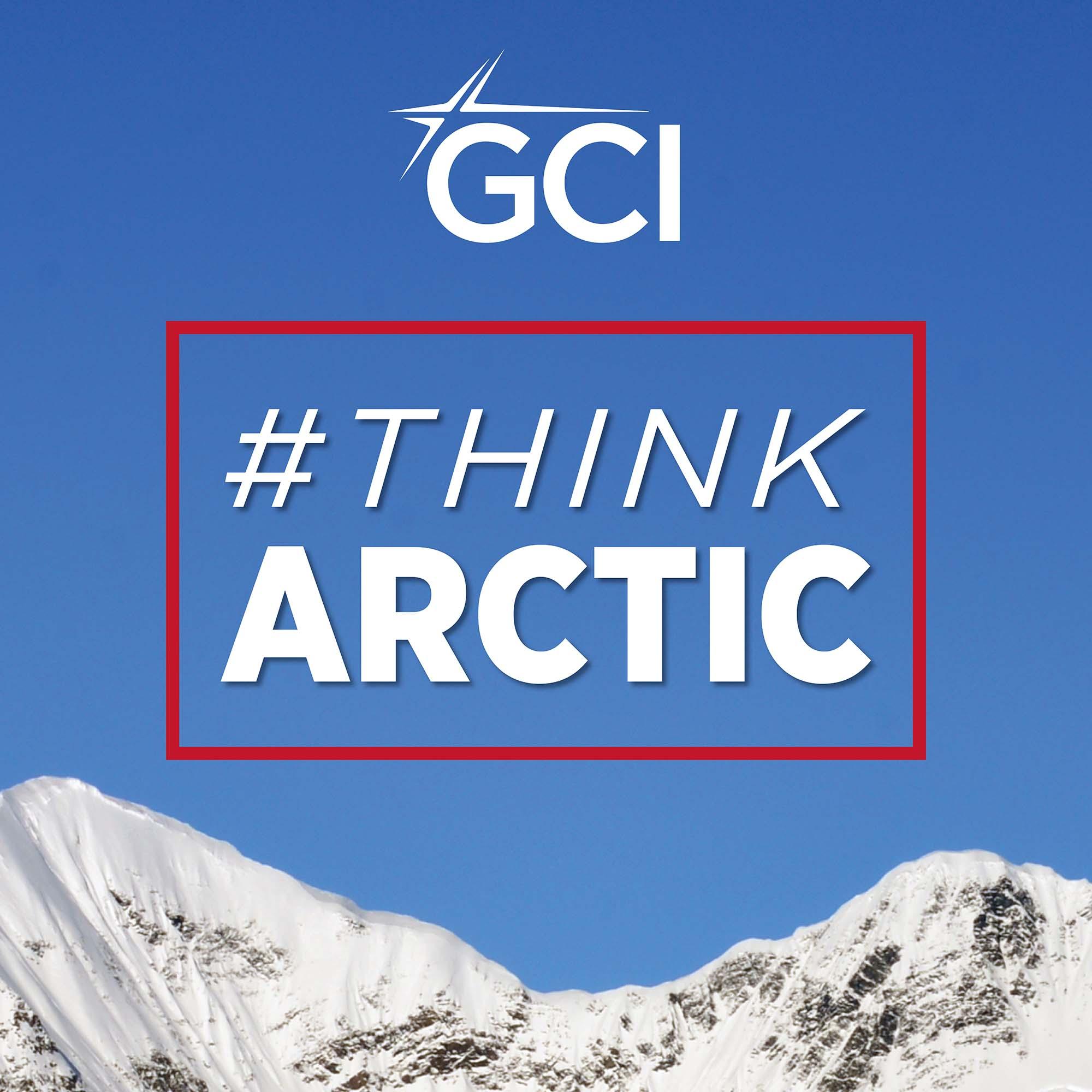 Think Arctic Logo.jpg