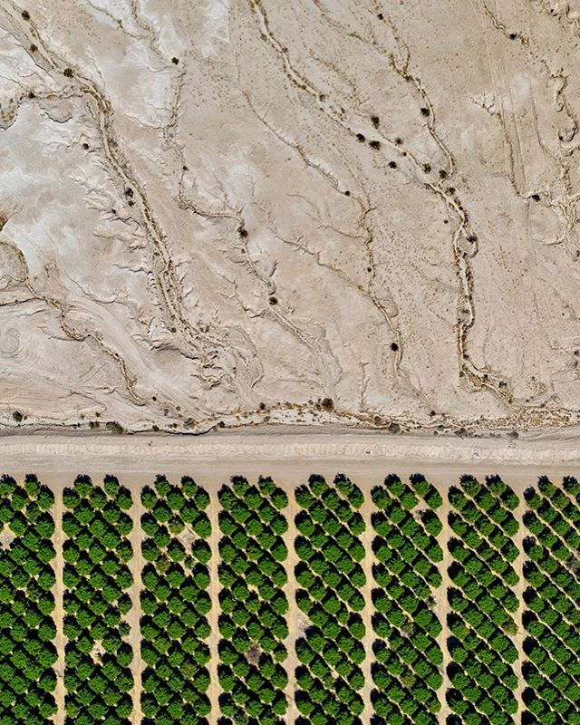 Entropy and order. Citrus rows, southeastern Riverside County. This shot illustrates two different kinds of water on the landscape- natural surface runoff and erosion associated with wastelands of hydrophobic desert slopes, and managed-use groundwater extraction with its profit-making abundance. There is an illusion created in the contrast here- as suggested by the composition rather than the subject. Since most groundwater using crops require far more water from the ground than can be replenished each year, drought or not, which eventually leads to a reduction in what have been considered arable lands throughout the west wherever wise use is not enforced.  SK Lorenzen/Monument Photography 2019. _______________________________________ #desert #agriculture #citrusfarm #abstract #aerial #drone #coachellavalleywaterdistrict #art #dronestagram #farming #water #california #watershed #watermanagement #sustainableagriculture #geology #geologyart #abstractart #abstractaerialart
