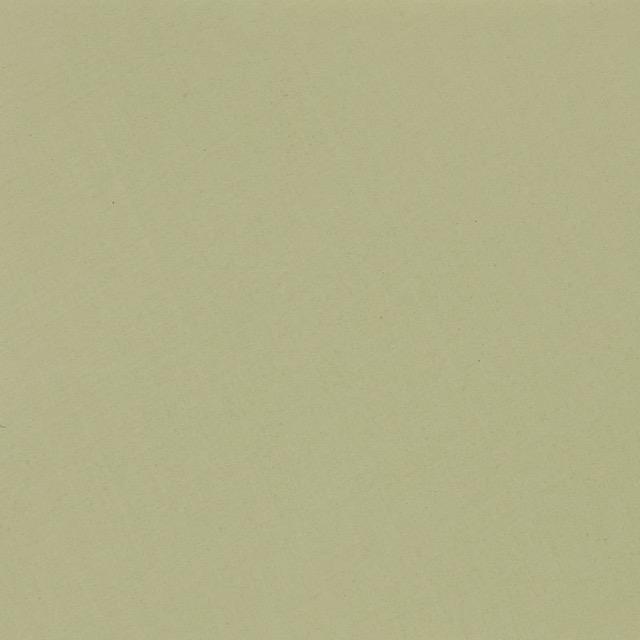 Cereus 58