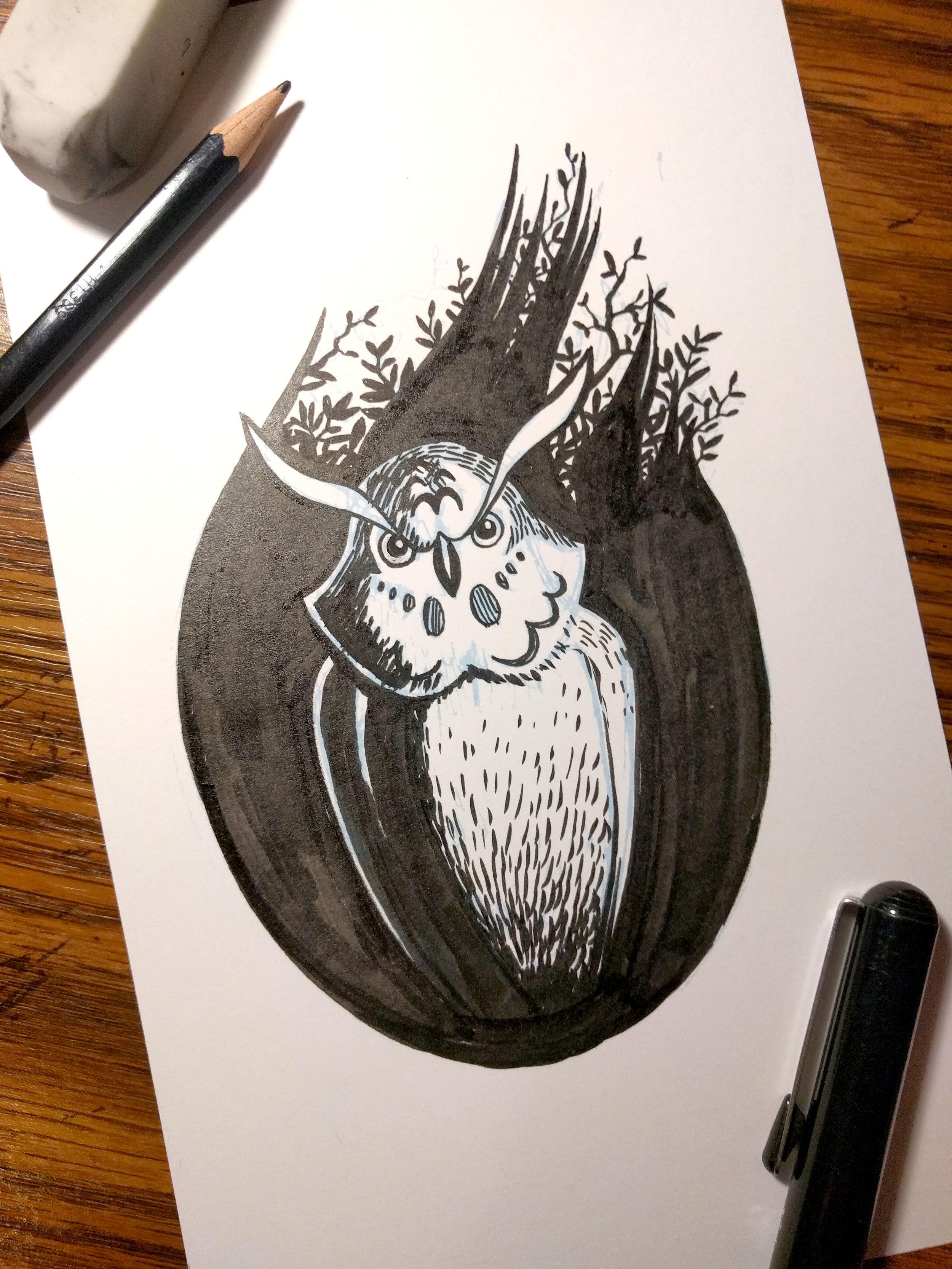 8_Owl.jpg