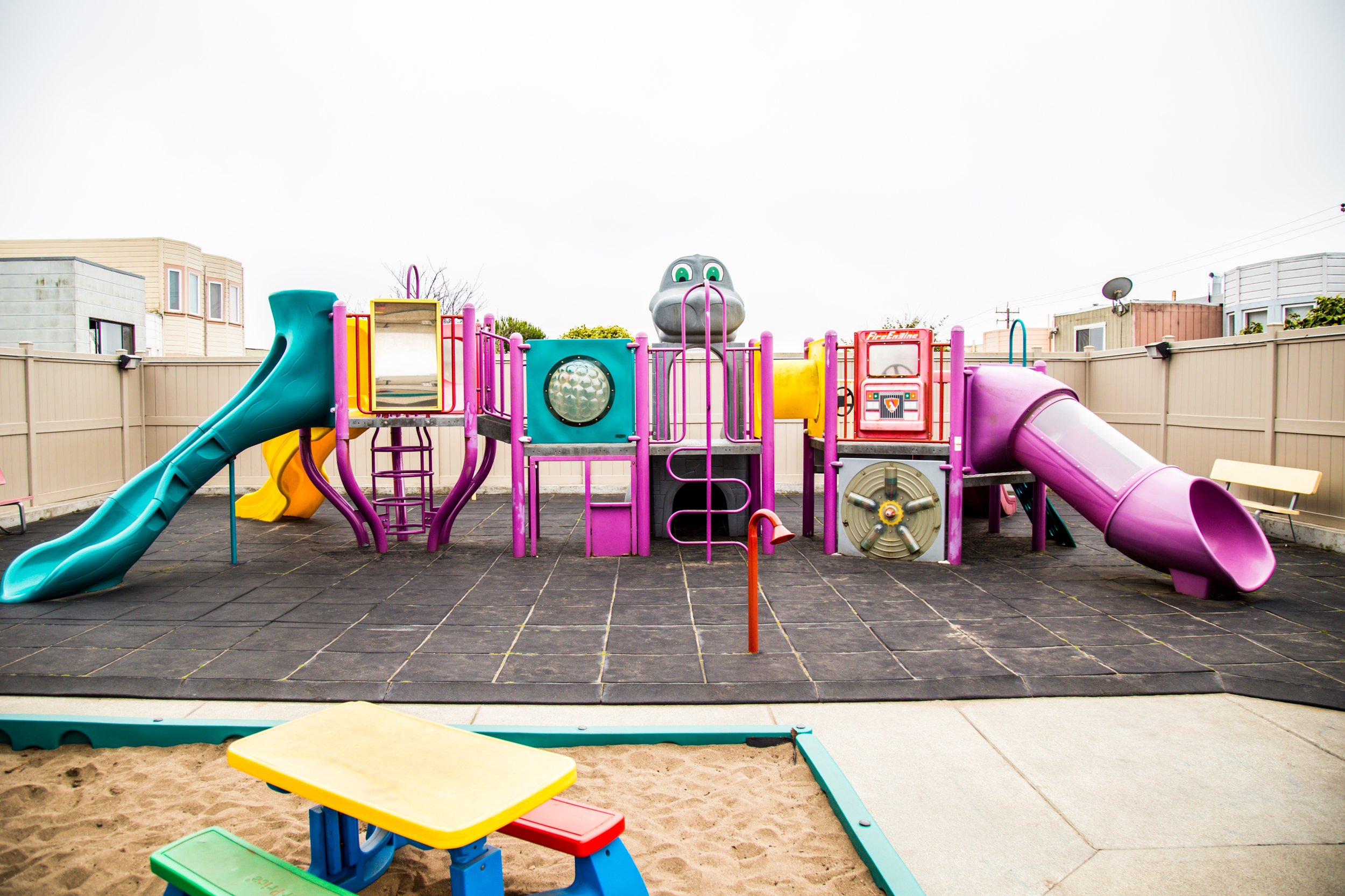 Our play structure, great for climbing, sliding, and peek-a-boo!