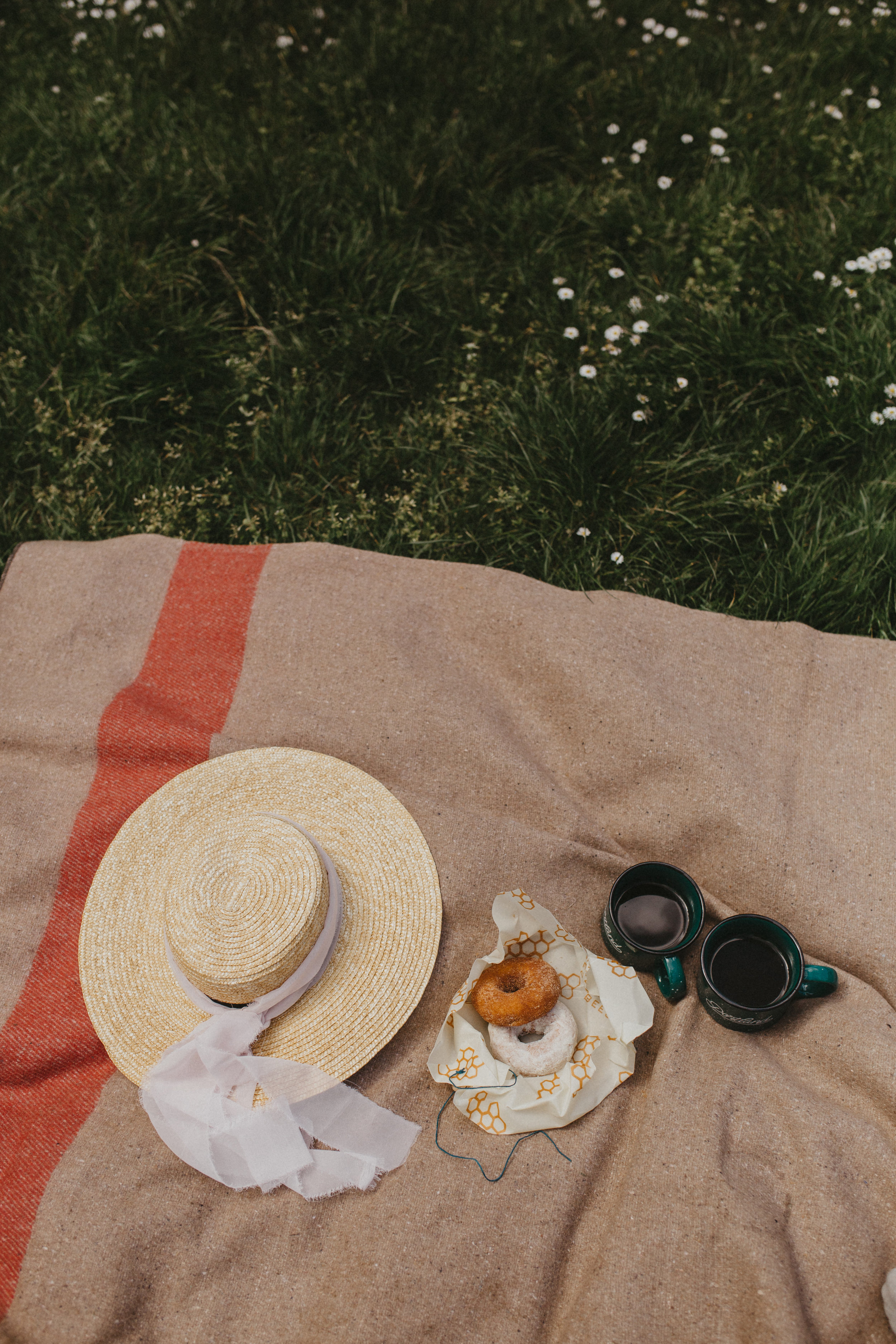 picnic-kiara-1.JPG