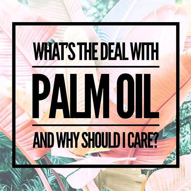 Palm oil: a healthy alternative to vegetable oil used in processed foods. Super cheap and shelf stable emulsifier in cosmetics and skincare (it's found in about 70% of products). So what's the problem?  Unfortunately, it's recent popularity has led to massive deforestation in Indonesia and Malaysia.  Today there are 60 million tons of palm oil produced per year. The good news is that there are organizations committed to producing it sustainably, but most of it comes from plantations using sketchy production practices. With the demand steadily increasing, rainforests are being cleared at rapid rates, causing displacement of native communities, human rights abuses, huge CO2 emissions, and 192 species of animals near extinction.  Why should we care about the deforestation in Indonesia and Malayasia?  For starters tropical deforestation is responsible for 10% of carbon emissions globally (for context, the US is responsible for 15%). Also, the forests on these islands are some of the most bio-diverse in the world. Deforestation has driven orangutan, Sumatran tigers, and species of elephants and rhinos to the brink of extinction, along with 114 species of birds and 29 species of reptiles. Palm Oil plantations have destroyed 80% of orangutan habitats in the last 20 years.  Production is projected to double in the next decade, and has already moved into Latin America and Africa. It's an extremely profitable industry that isn't going anywhere, but it can be done sustainably. Ghana and Gabon are both adopting sustainable practices for their budding palm oil industries, but it can't be done without the support of businesses willing to pay higher prices. . This is where we come in! Look for transparency about the source of palm oil in products if they're using it. Brands will usually indicate that it's sustainably sourced. Palm oil is mainly used in lotions and things that lather so keep your 👀 peeled!  This topic is so complex it's crazy hard to cover it in an IG post! Article