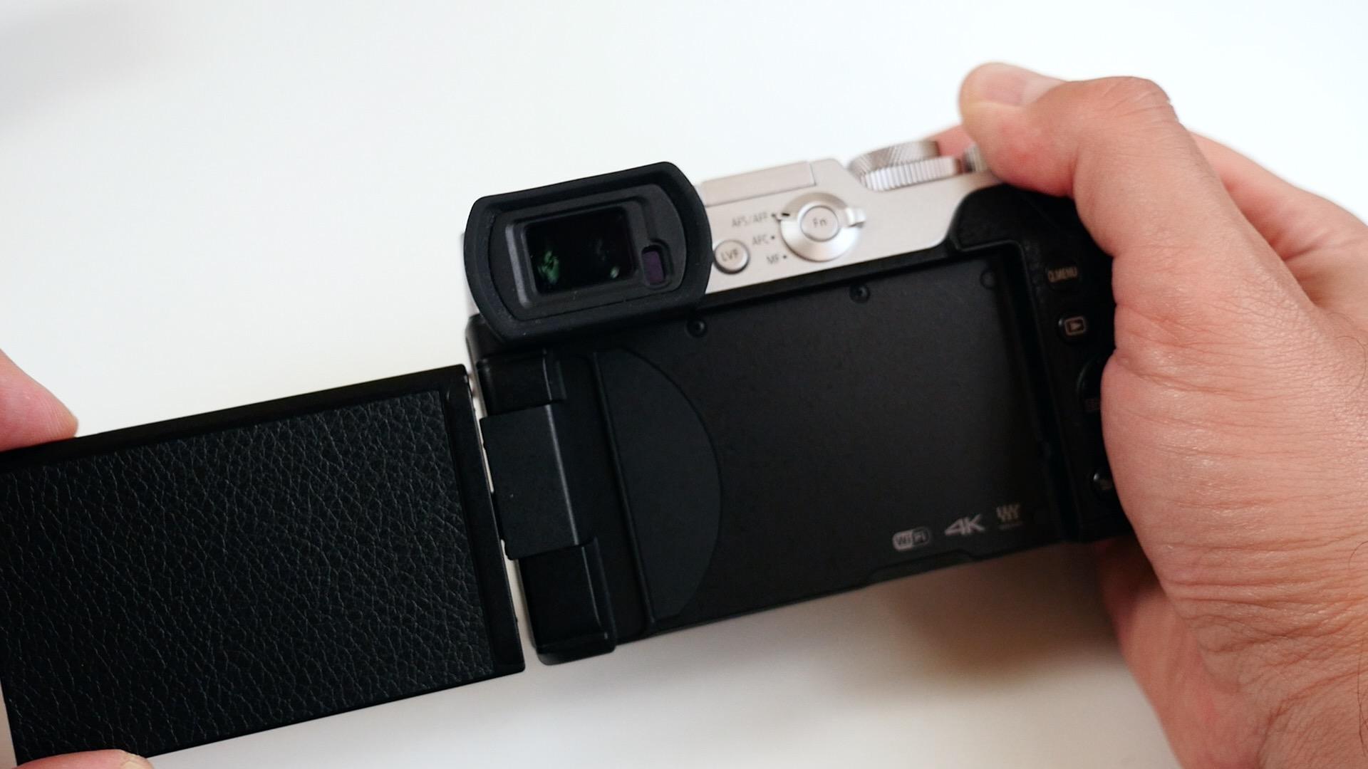 Lumix GX8 7.jpg