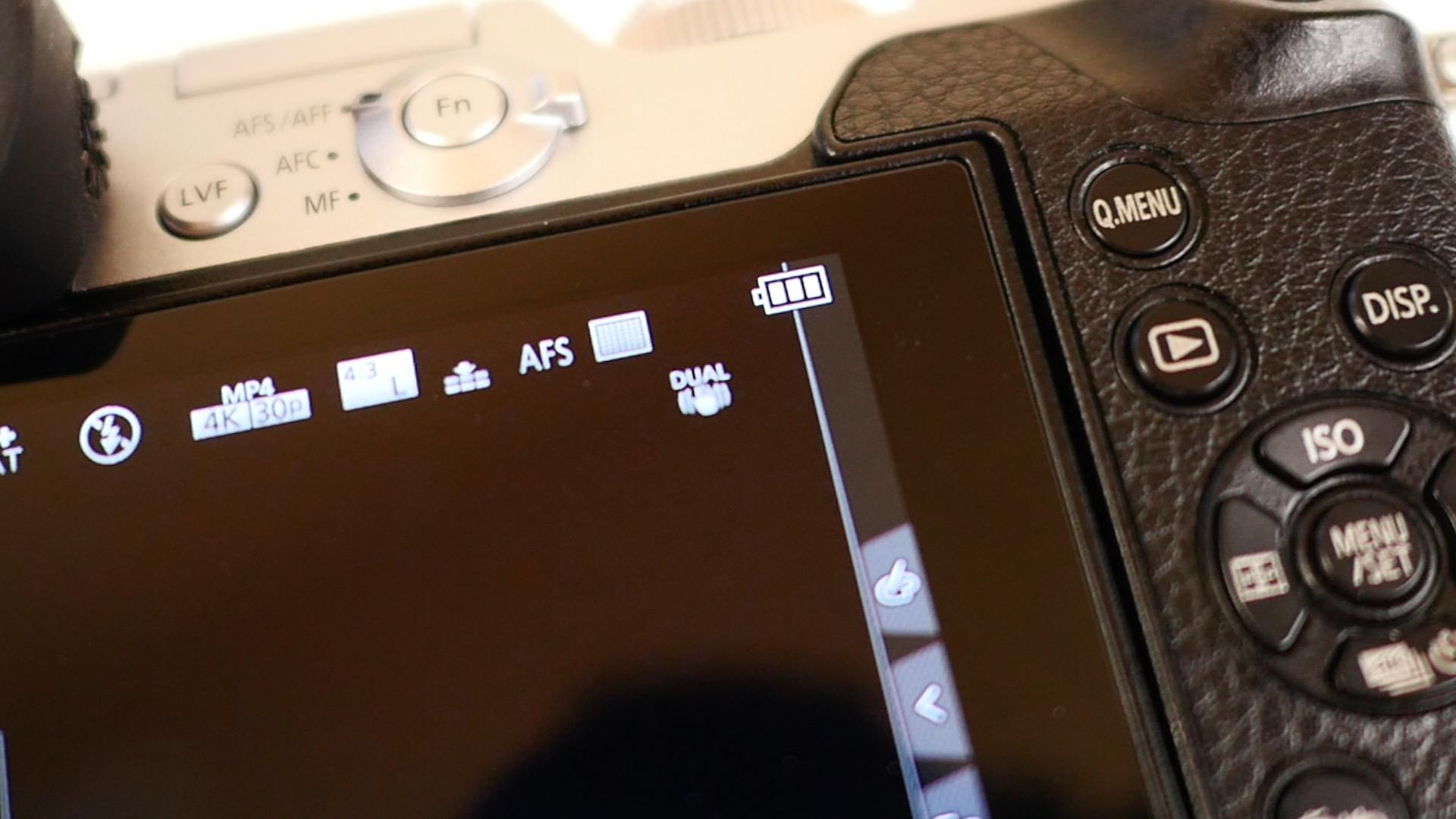 Lumix GX8 8.jpg