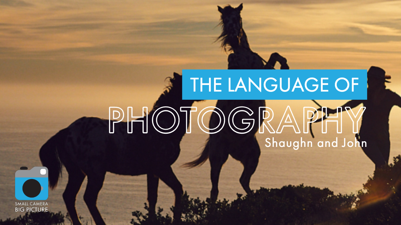 The Language of Photography - Shaughn and John poster.png