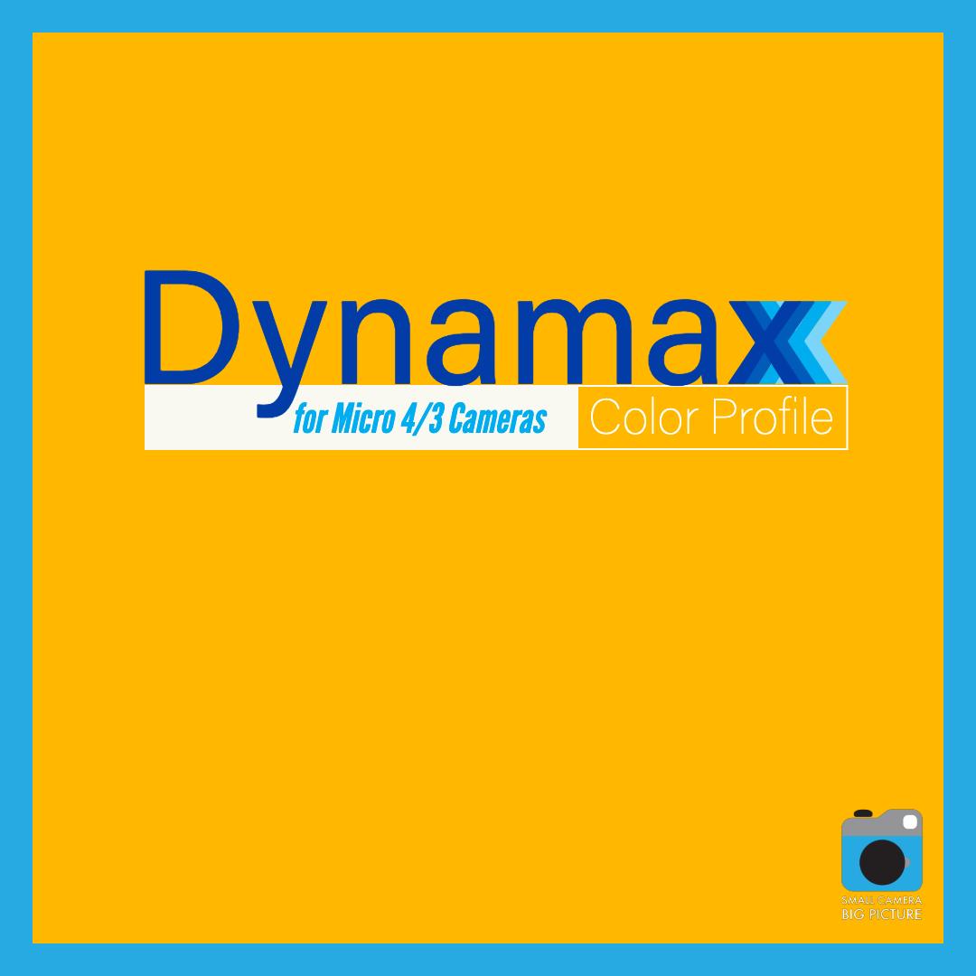 Dynamax Logo Square