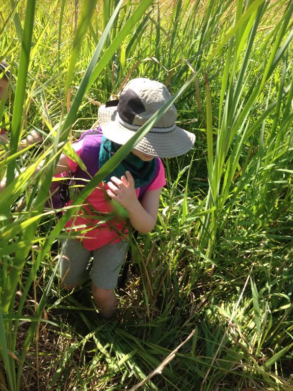 Marsh Mucking. Photo Credit: Holly Roger