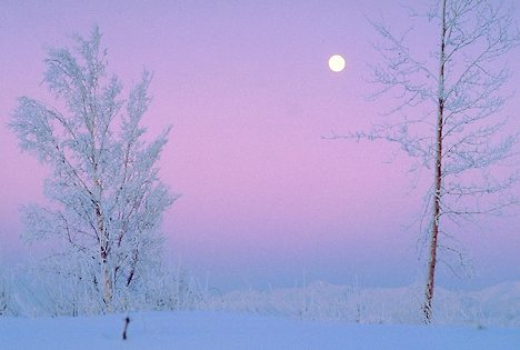 Photo Credit: Bing Images