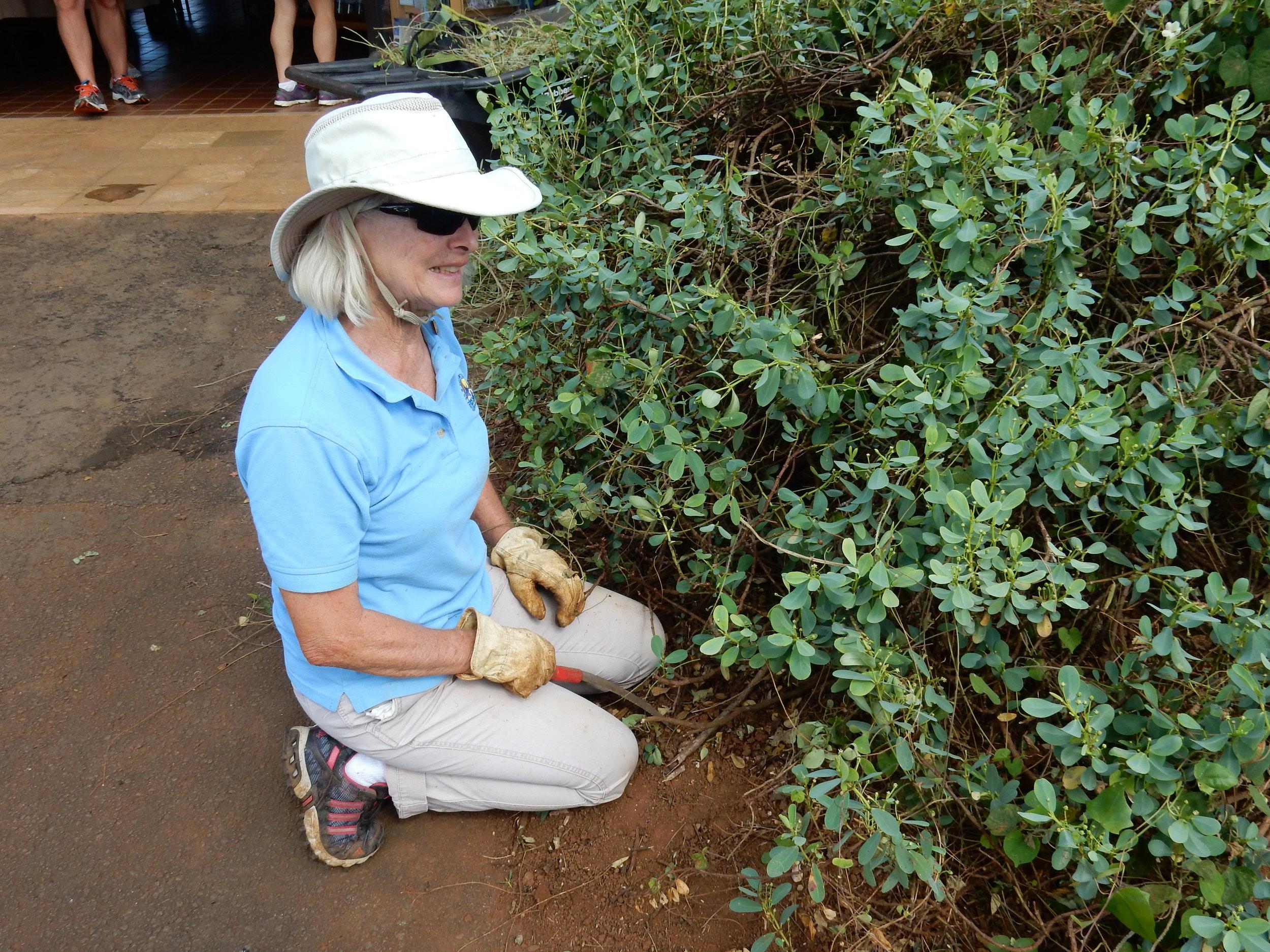 Margaret Degnan FWS volunteer KPNHA.JPG