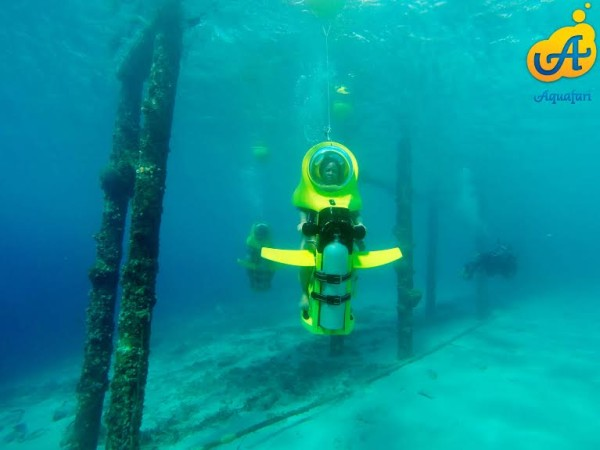 aquafari4-600x450.jpg