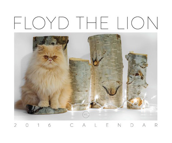 Floyd The Lion 2016 Calendar Cover