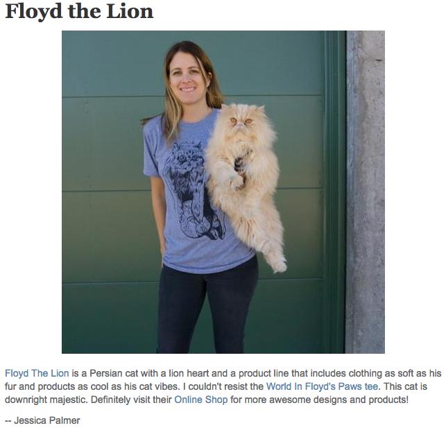 Floyd The Lion