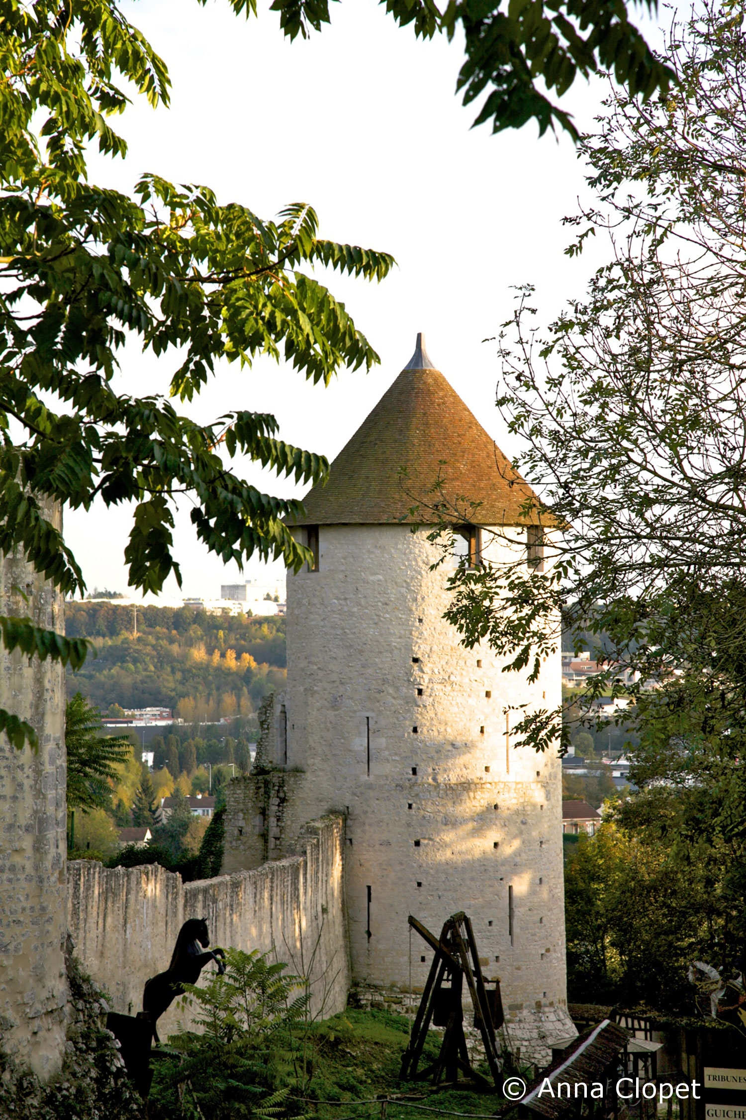 photo-travel-tuition-provins-chateau-IMG-7733