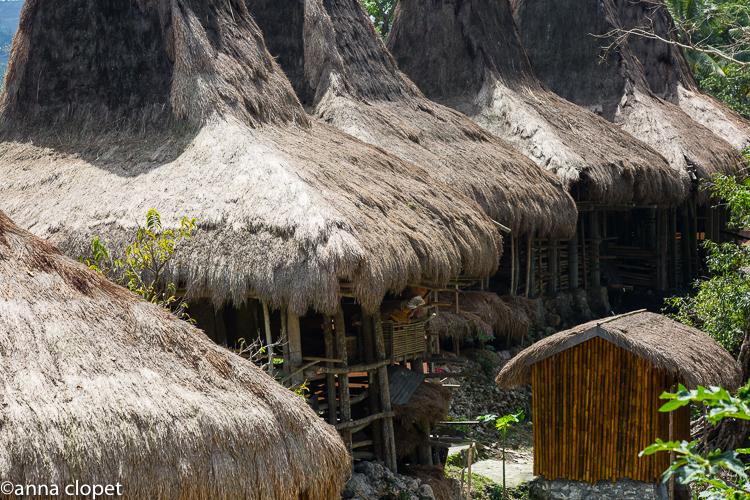 Sumba#tribal#village#roofs