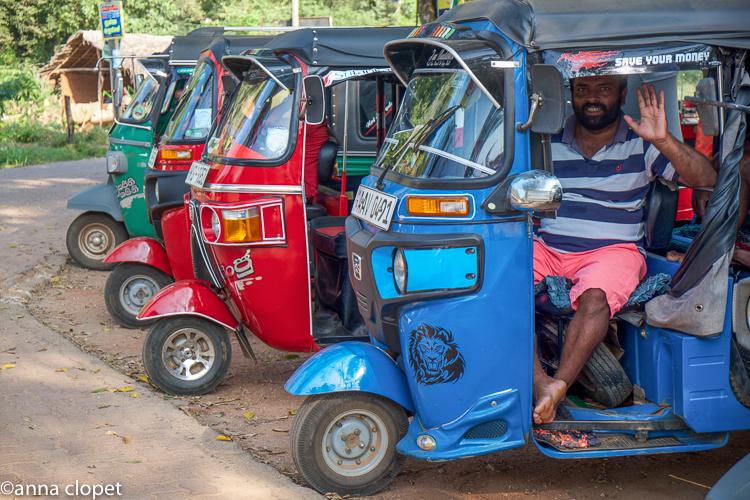 Sri Lanka tut tut driver
