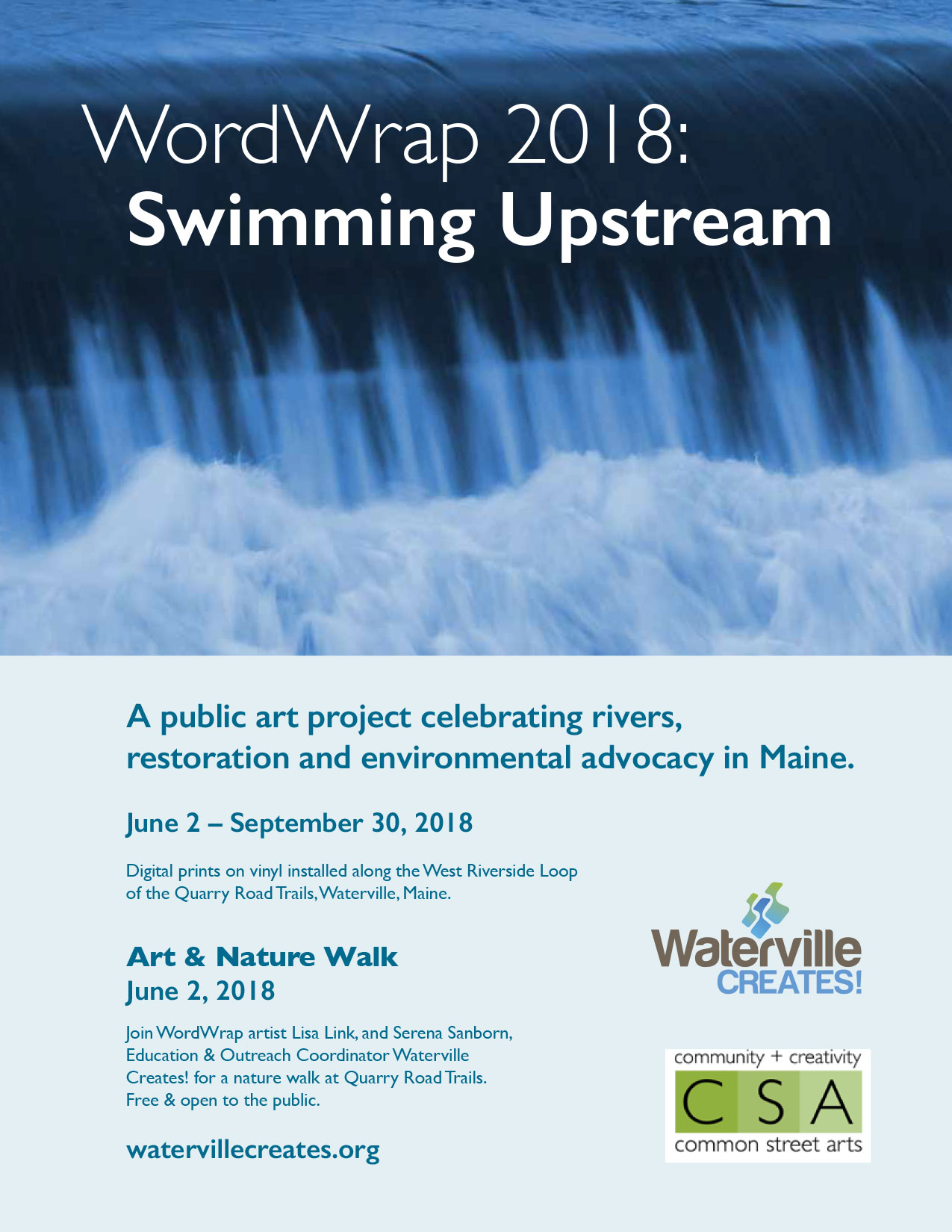swimmingupstream-flyer-lisalink.jpg
