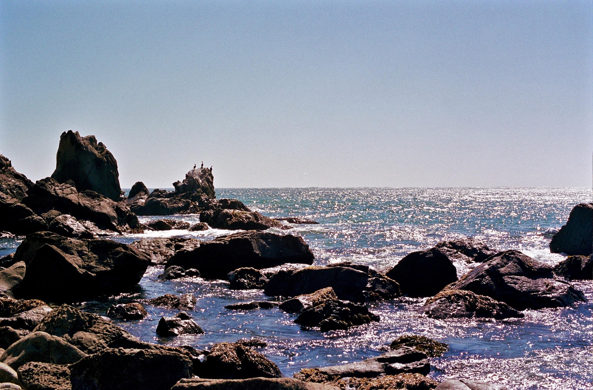 California Coast near Fort Ross, Nikon F2A, 50mm f/1.4 Nikkor-S