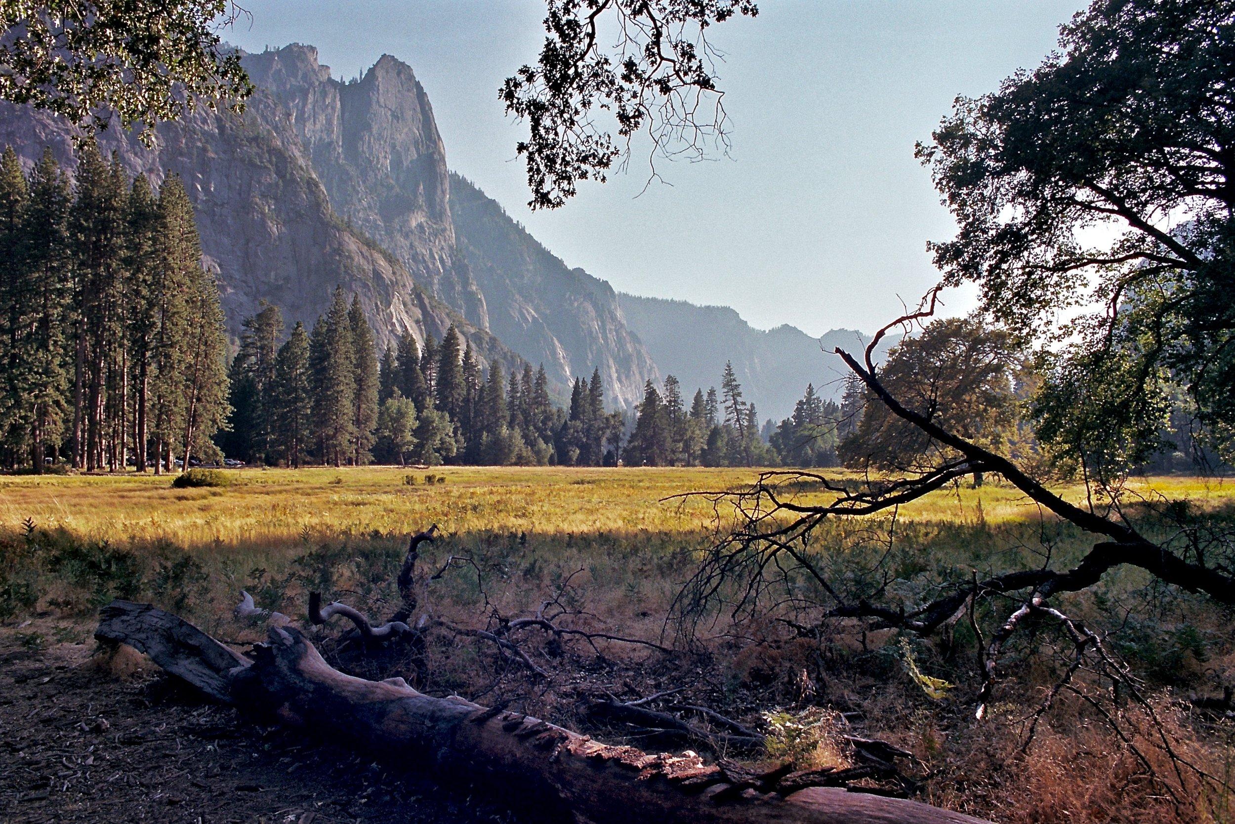 Yosemite Valley, Olympus OM-2n