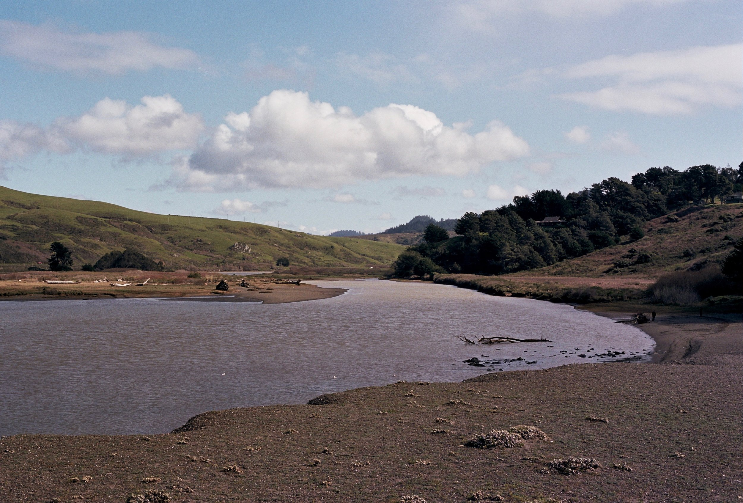 Russian River, Jenner, CA/Canon F-1n with 50mm Canon FD f/1.4