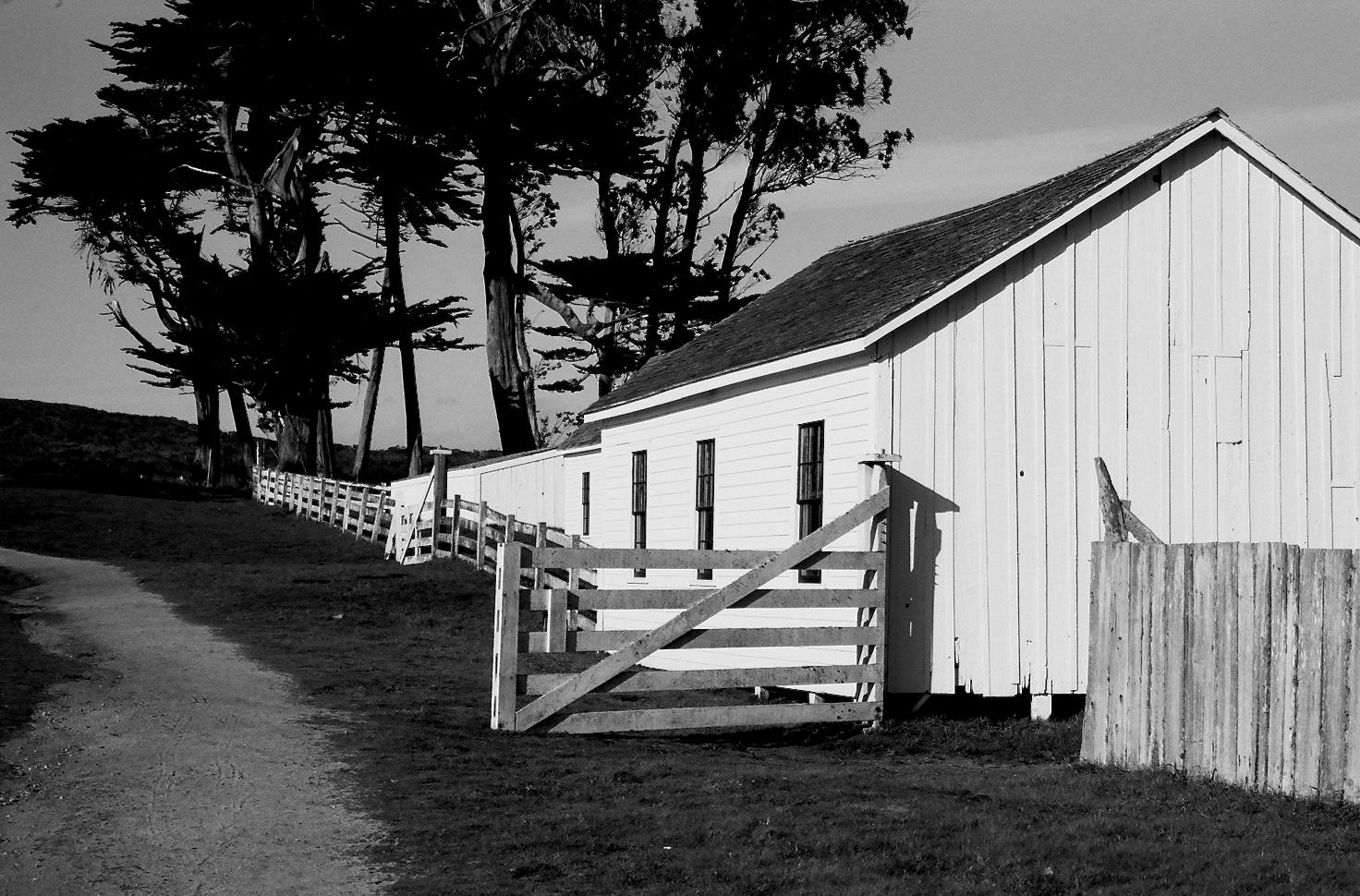 Pierce Point Ranch, Spotmatic SP, 50 Super Tak