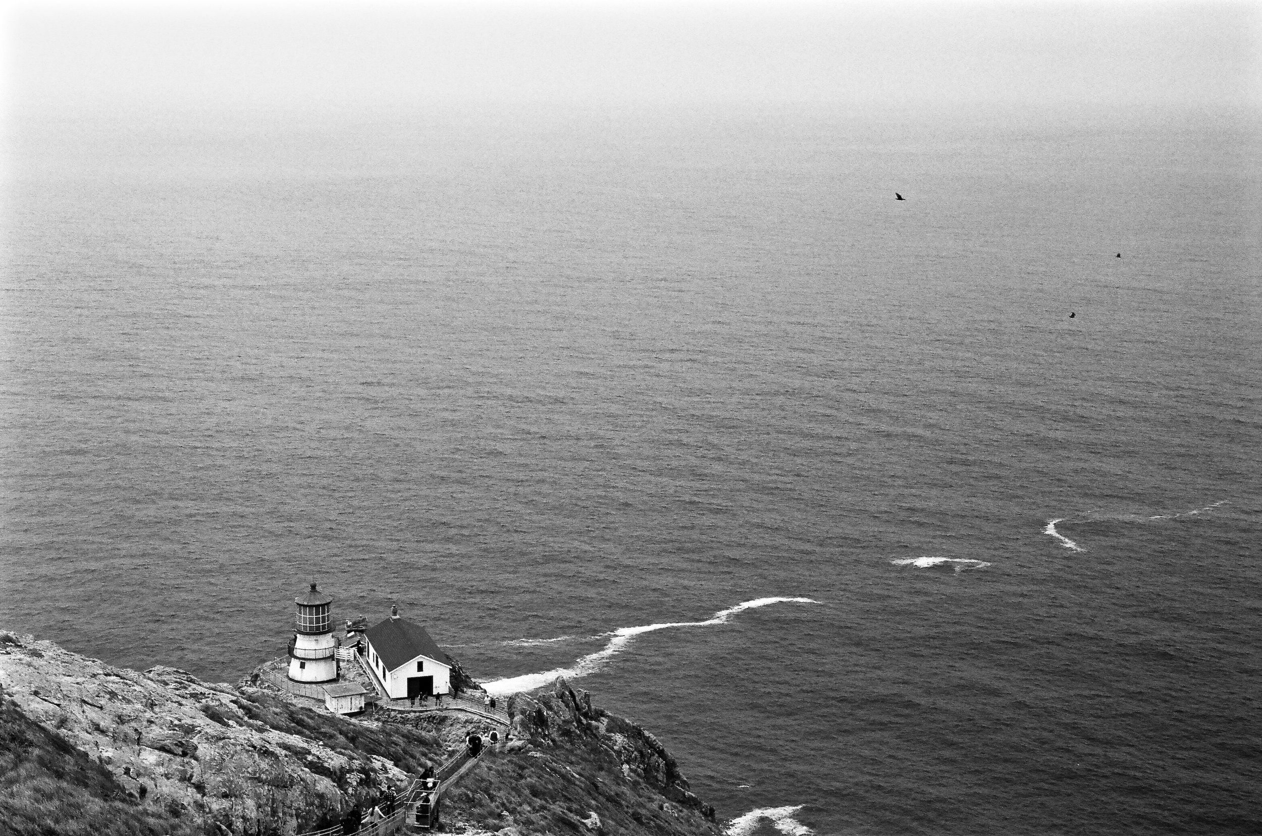 My style is certainly influenced quite a bit by where I live. (Pt Reyes Lighthouse, Leica M2, Acros film)