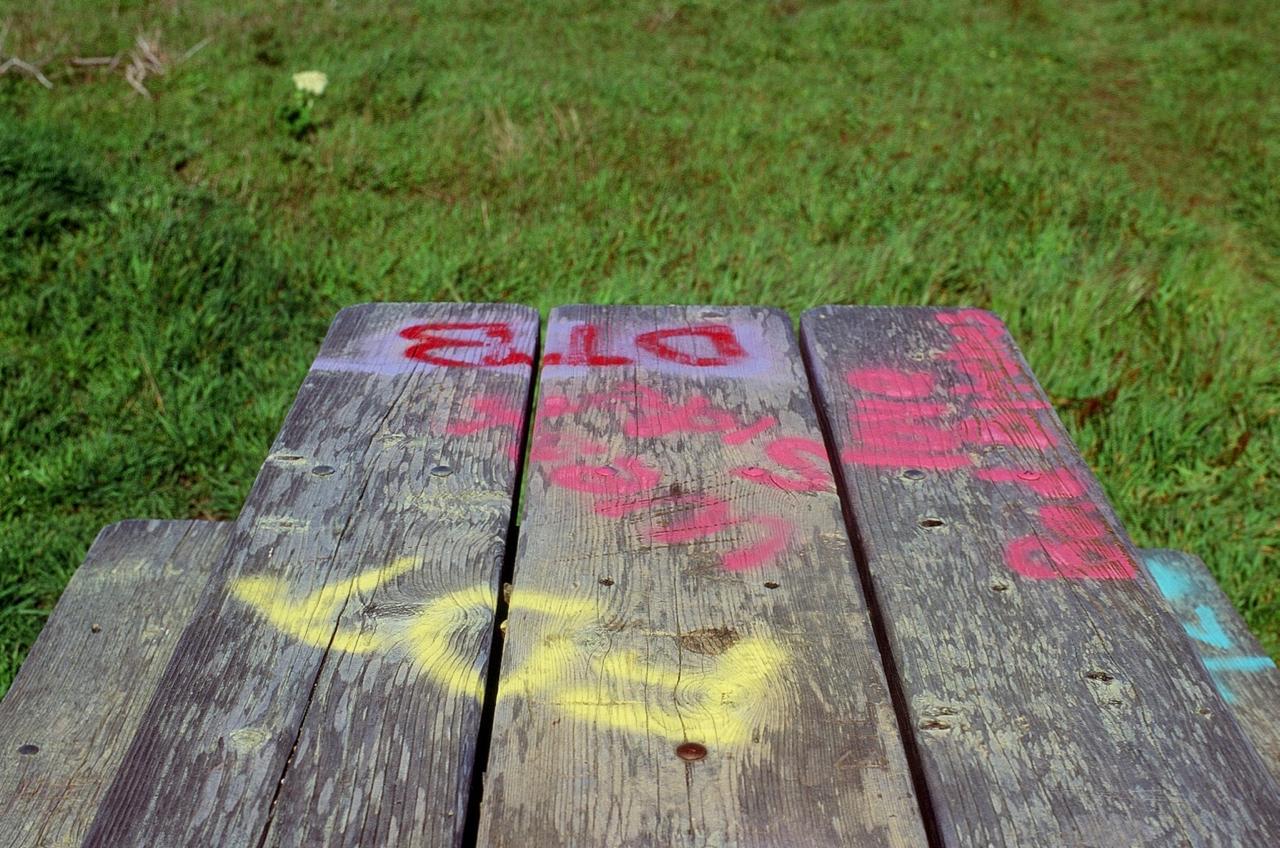 Tagged Picnic Table, Bodega Head, CA (Contax RX, 50 Zeiss Planar, Velvia 100)