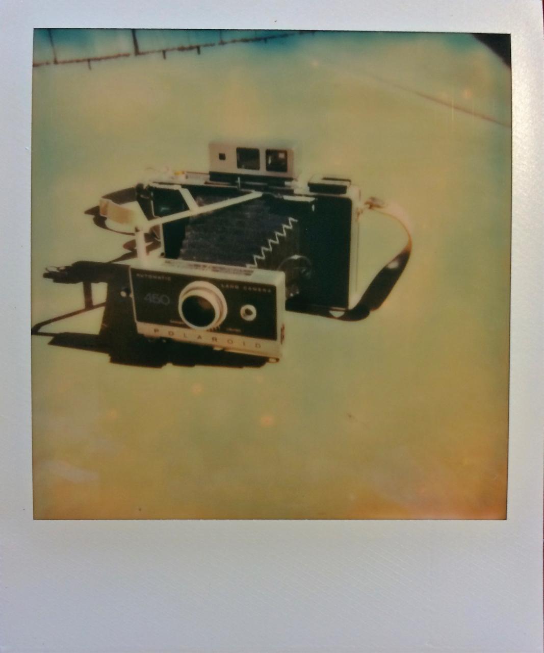 My Polaroid 450 shot with my Polaroid SX-70