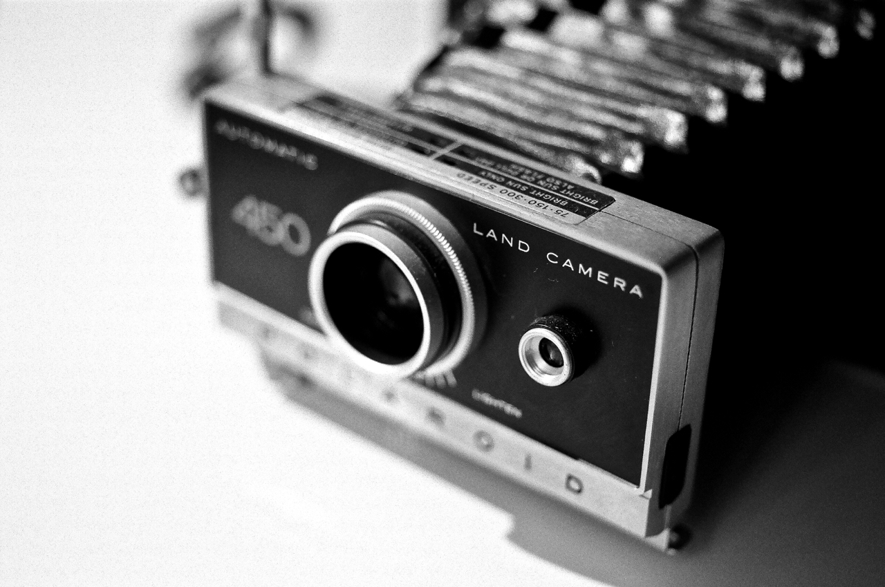 Polaroid Land 450 shot with Nikon F2 and 55mm Micro-Nikkor