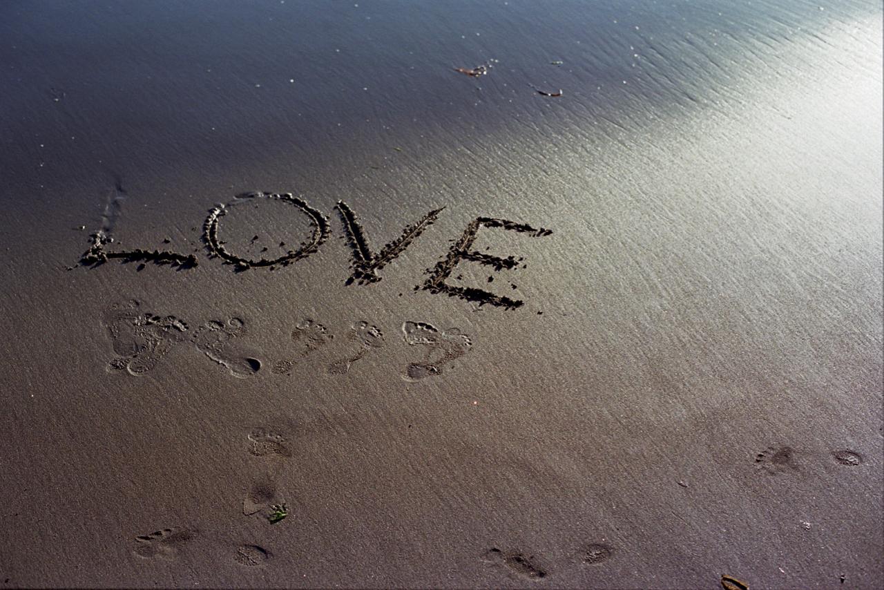 Love On The Beach.jpg
