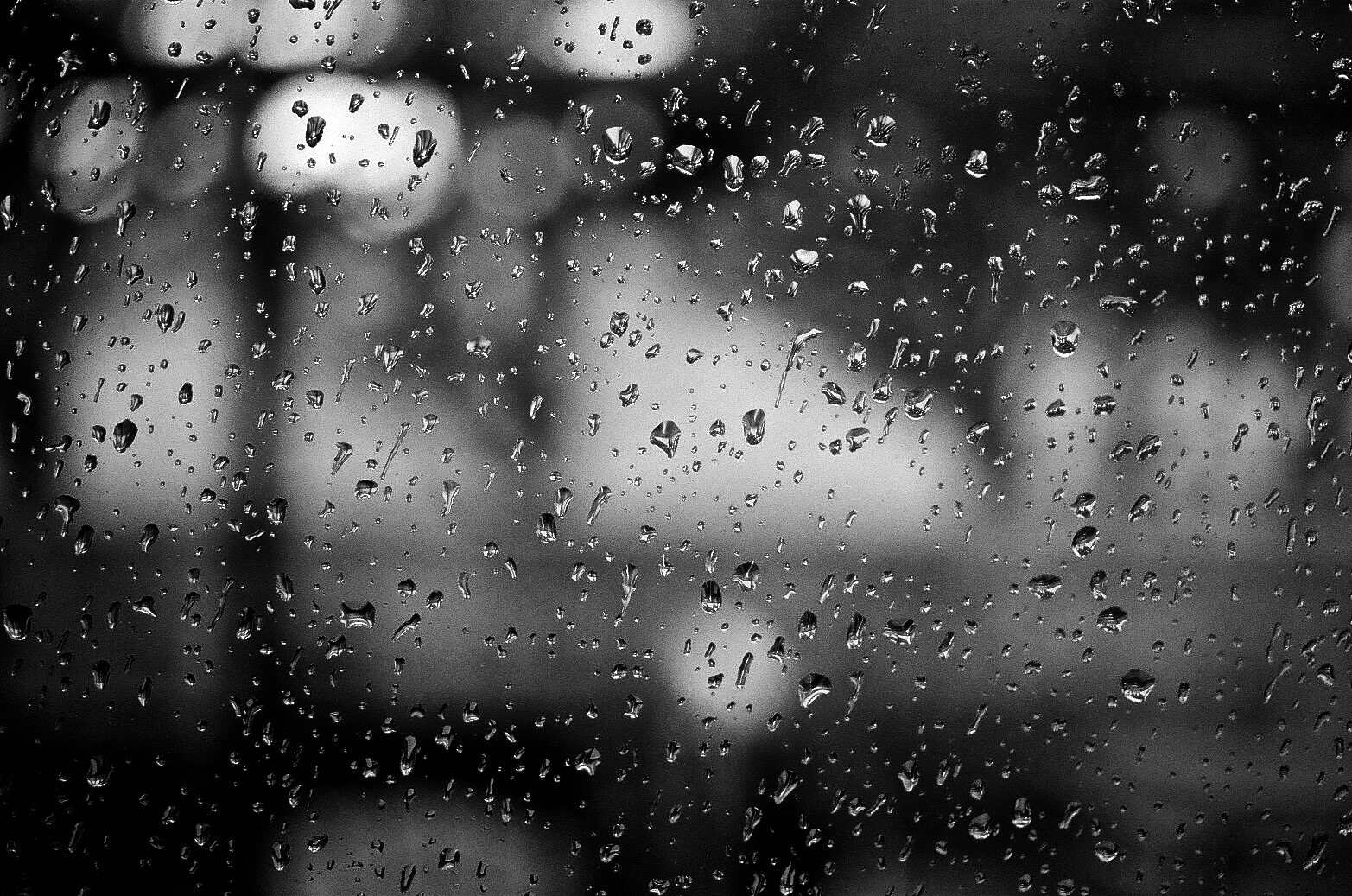 Rainy Day, Nikon F2, 55mm f/2.8 Micro-Nikkor