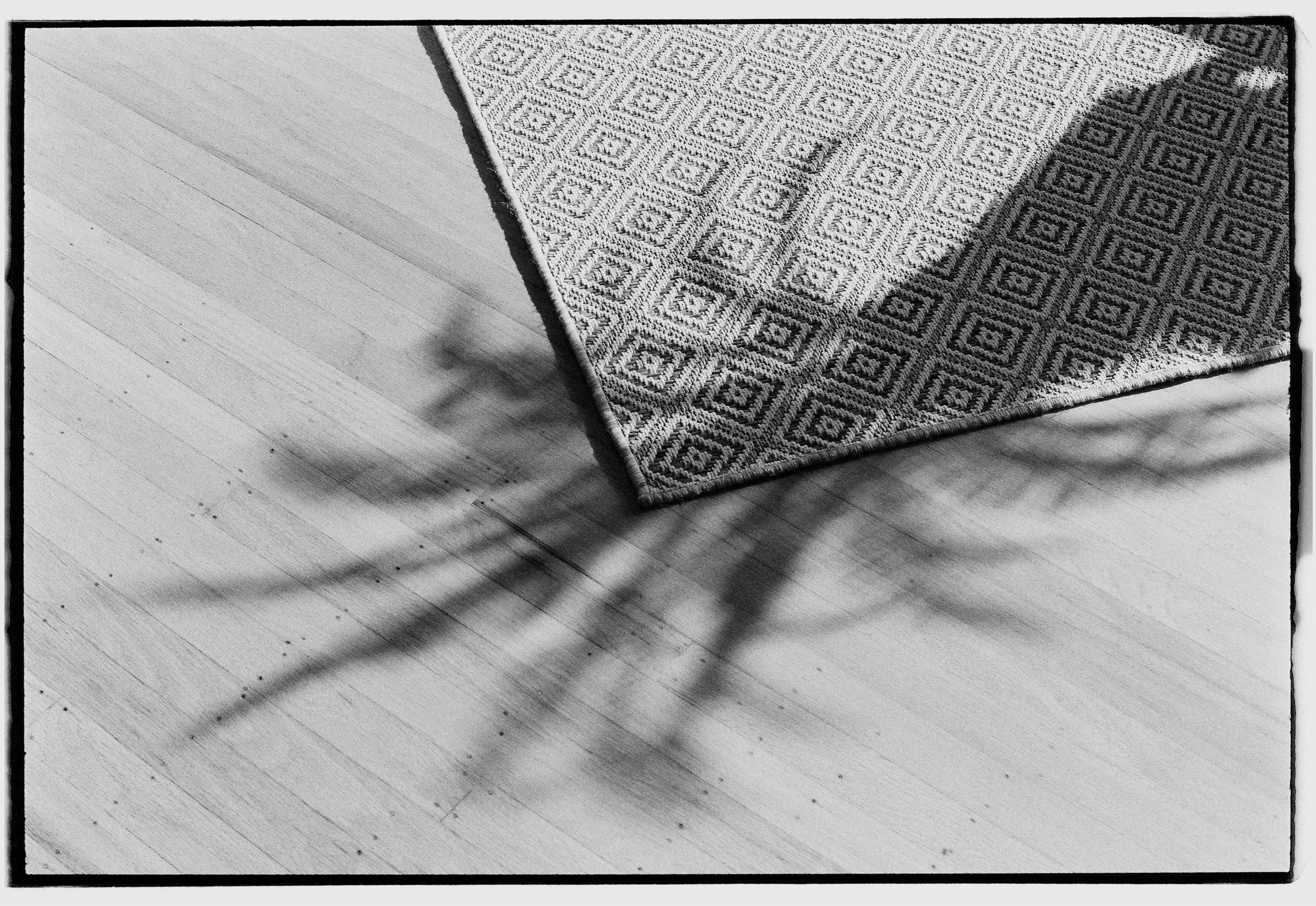 Shadows on Rug.jpg